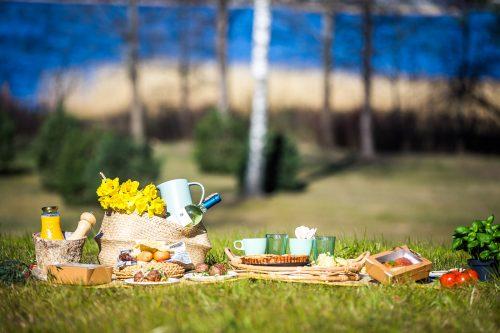 Pikniks Baltvilla